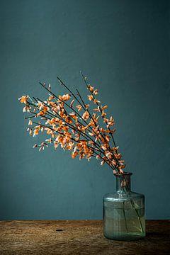 Fotodruck von orangefarbener Brem in Glasvase von Jenneke Boeijink
