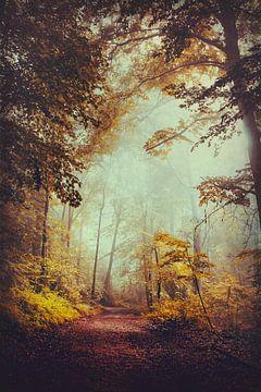 Silent Forest van Dirk Wüstenhagen