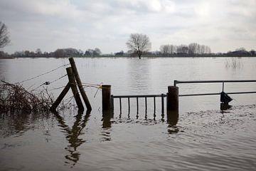 Verdronken hek van Kees van Dun