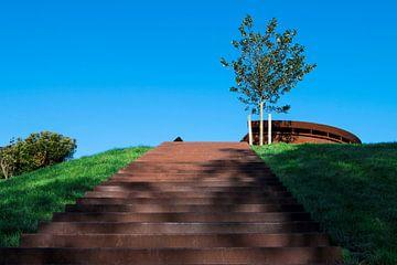 Heuvel trap van Alejandro Vivas