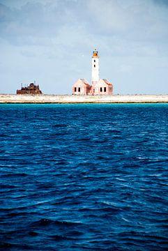 Leuchtturm auf Klein Curacao von Joke Van Eeghem