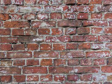 Bakstenen muur van Rafael Delaedt