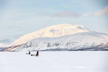Besneeuwde bergtop tijdens husky sledetocht
