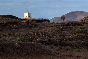 Lanzarote landscape van Peter van Eekelen