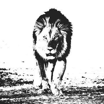 Der König von Sharing Wildlife