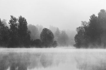 Bomen die in de ochtendmist boven het meer verdwijnen van Patrik Lovrin