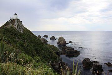 Nugget Point, Nieuw Zeeland van Pamela Fritschij