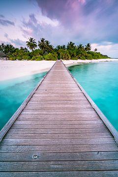 De weg naar het paradijs ( rechtopstaand ) van Christian Klös