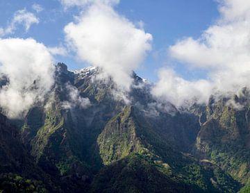 Balkon von Madeira von Gideon Gerard
