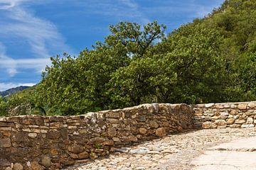 Stenen muur in het zuiden van Frankrijk van Anja B. Schäfer
