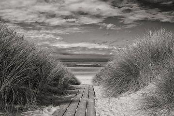 Strandovergang van Zeeland op Foto
