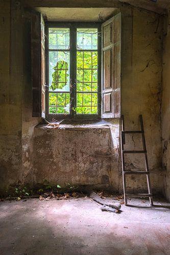 De ladder van Truus Nijland