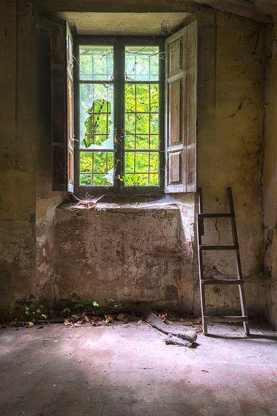 De ladder von Truus Nijland