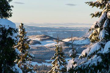 Sneeuwlandschap in Noorwegen van Reis Genie