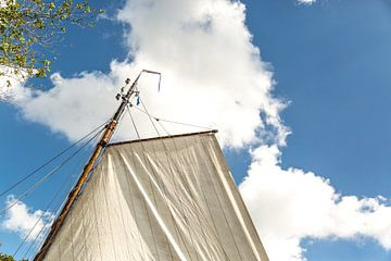 Sailing van Willy Sybesma