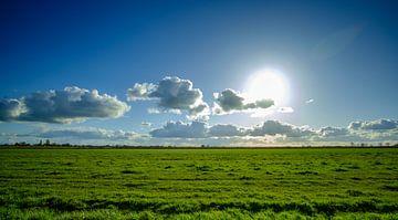 Natuur in Nederland landschap  van Jurgen den Uijl