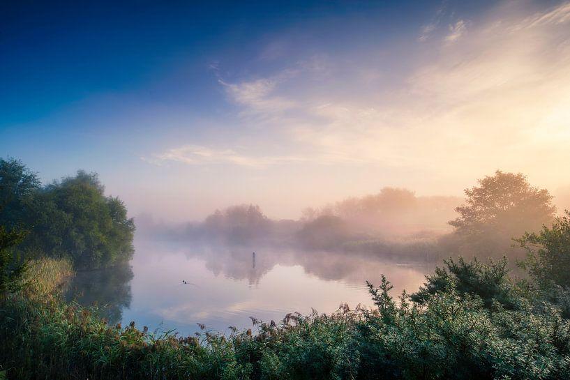 Morning Fog van Martijn Kort