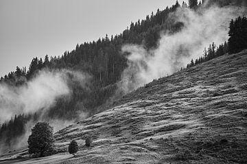 Alpennebel 4 von Bart Rondeel