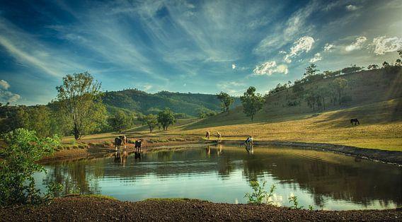 Australische Outback waterdam bij de Garrawilla boerderij van Sven Wildschut