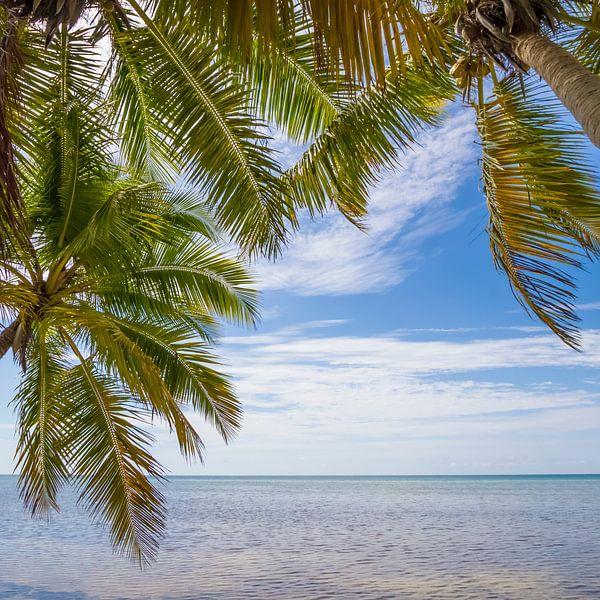 FLORIDA KEYS zeezicht van Melanie Viola