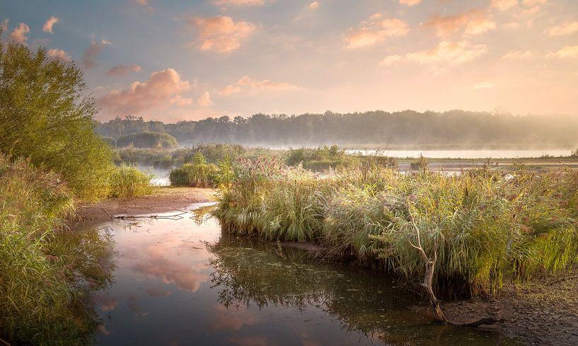 Ochtend aan De Luysen Natuurpark Kempen-Broek van Peschen Photography
