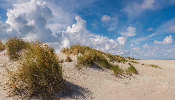 Strand en duinen , Oosterend Terschelling, Wadden eiland, Friesland van Rene van der Meer
