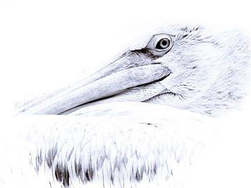 Pelikan von Lilian Heijmans