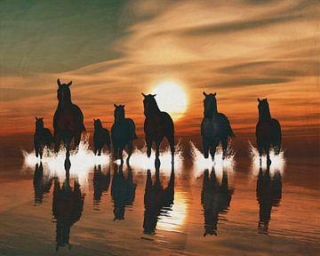 Paarden bij zonsondergang in zee