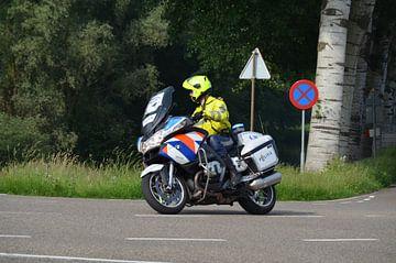 Politie motor van de  Landelijke Eenheid van de Wolf - Fotografie