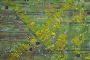 Die grünen Felder von Bregje Lips