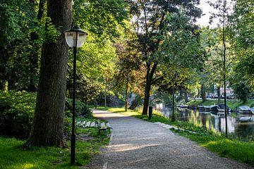 De Tolsteegsingel in Utrecht van Mike Peek