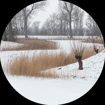 Winterlandschap in de Bommelerwaard van Ronald Jansen