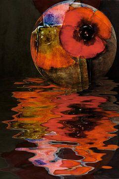 Roter Mohn - Wassermohn von Christine Nöhmeier