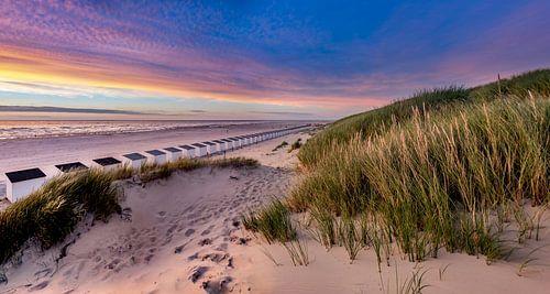 Paal 28 strand - Texel  van