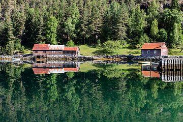 Spiegeling Eidsfjord van Bart van Dinten