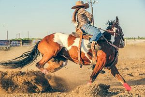 Veedrijfster berijdt een westernpaard