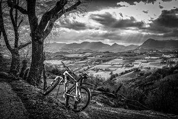 mountainbike von Frans Scherpenisse