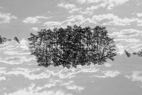 Gespiegelde bomen (3) van Mark Scheper