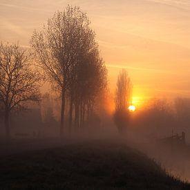 Ochtendgloren in de polder van LHJB Photography
