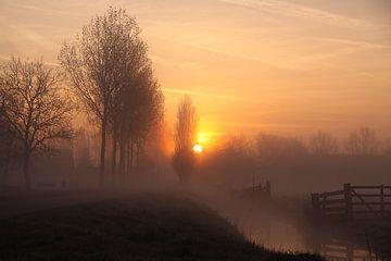 Ochtendgloren in de polder