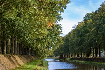 Herfst aan de beek von Marjan Noteboom