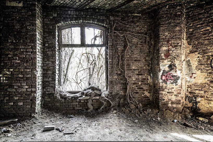 Fort de la Chartreuse von Steven Langewouters