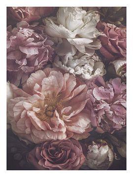 Blüte von Marina de Wit