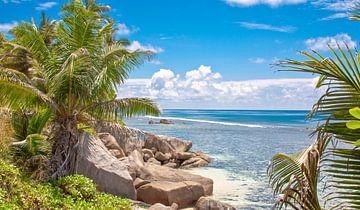 Tropischer Strand mit Palmen und Felsen - Seychellen von Alex Hiemstra