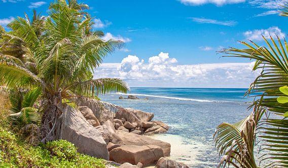 Tropisch strand met Palmbomen en Rotsen - Seychellen van Alex Hiemstra