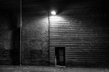Licht in de duisternis van Sidney Portier