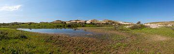 Panoramischer Dünensee von Yannick uit den Boogaard