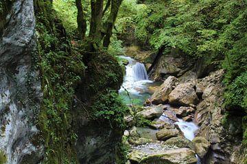 Landschap in Slovenië von Laura Reedijk