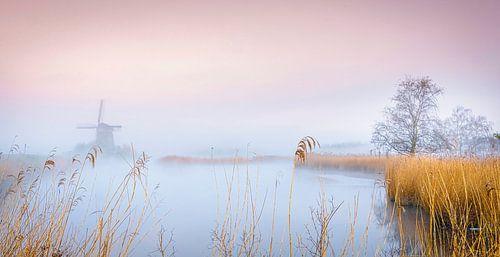 Twiske molen in de ochtend, Nederland