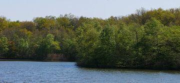 Frühlingsgrün und Wasser von Wim vd Neut